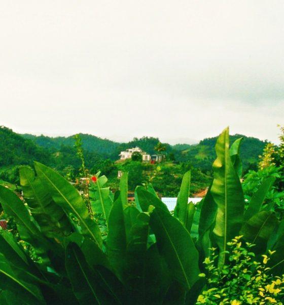 Vacanze in Giamaica viaggiare sicuri