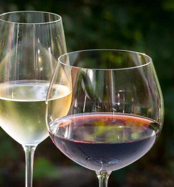 """10  luoghi, di """"vini"""""""
