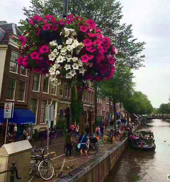 Amsterdam cosa vedere itinerario di 2 giorni