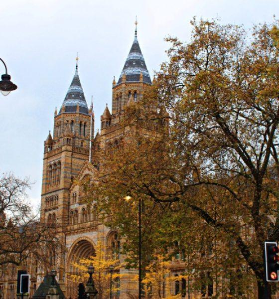 Musei di Londra gratis e interattivi