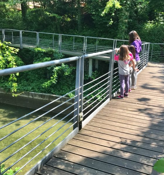 Parco per bambini: Parco Fluviale a Palazzolo