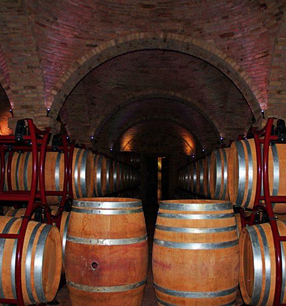 Borgo la Caccia ed il buon vino.