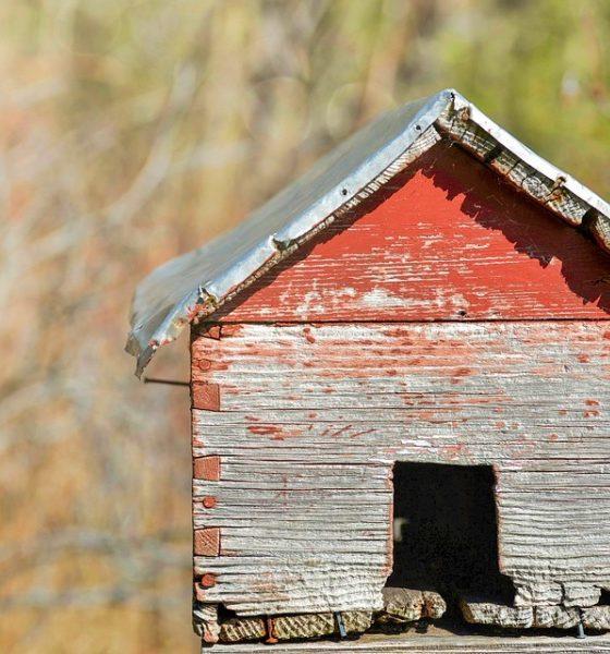 Scambio casa come funziona?